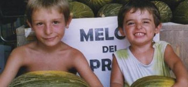 Melons del Prat